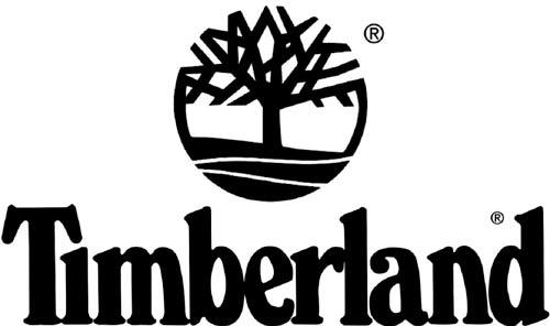botines timberland